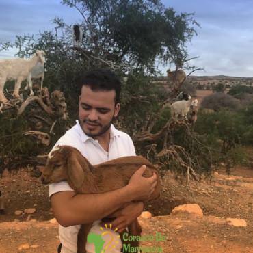 hammy guia profesional marruecos - corazondemarruecos